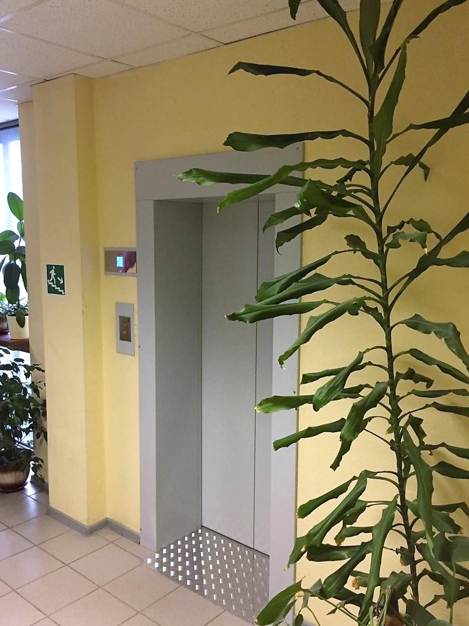двери лифтовые
